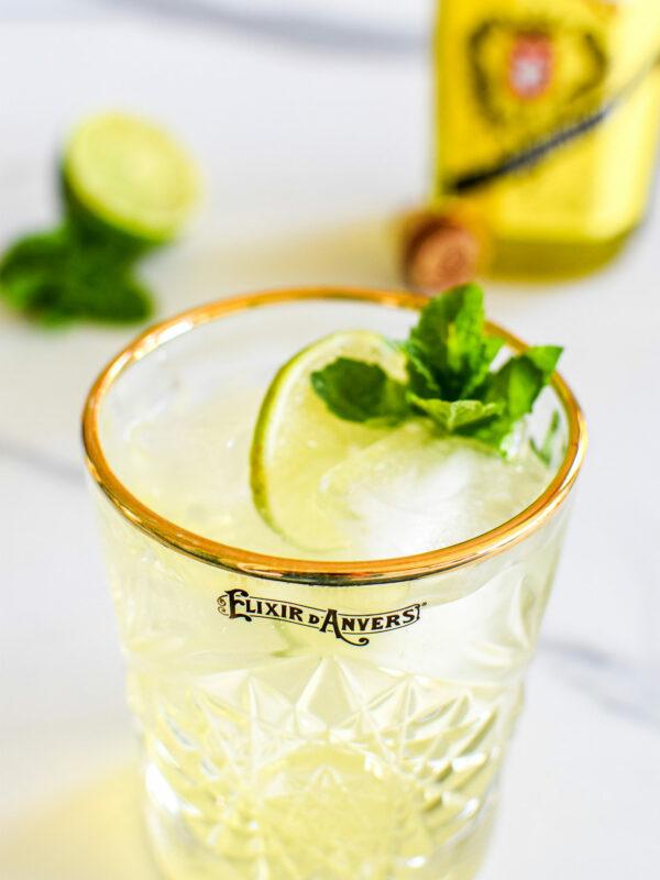 Elixir d'Anvers Ginger Beer